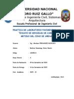 Inf._N_1_-_Densidad_de_Campo.docx