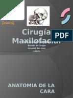 cirugiamaxilofacial-090813175140-phpapp01