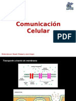 Comunicacion Celular (1)