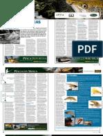 15.-EntomologiaBasicaPescaTruchasParte1.pdf