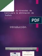 Lixiviación de Minerales de Hierro Para La Eliminación