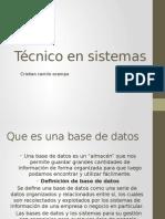 presentacion power point de la base de datos