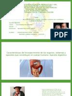 Envejecimiento-Aparato-Digestivo.pptx