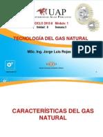 Características Del Gas Natural Clase