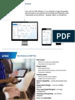 SAP Access Controls Fiori