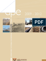 DPE Strategic Plan 2009-12