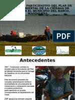 Componente participativo del plan de manejo ambiental de la ciénaga de zapatosa en el municipio del banco, magdalena