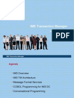 IMS Transaction Manager