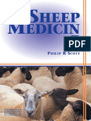 Philip Scott] Sheep Medicine | Sheep | Animal Welfare