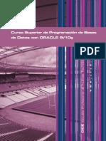 Curso Superior de Programación de Bases de Datos ORACLE 9i-10g