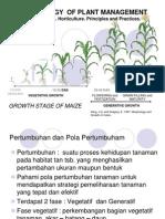 Dbt 8 Growth Stage