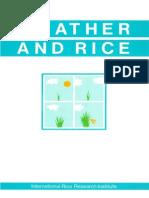 IRRI - Weather & Rice