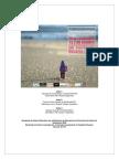 Programa definitivo- CICC2015