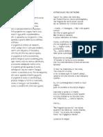 Poesie Comenius 2