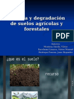 Pérdida y Degradación de Suelos Agrícolas y Forestales