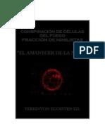 """Conspiración de Células Del Fuego-fracción de Nihilistas-""""El Amanecer de La Nada"""""""