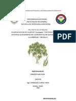 Proyecto Eucaliptos Act - Gelber