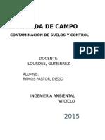 Informe Rodrigo
