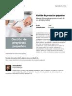 gestion_de_proyectos_pequenos.pdf