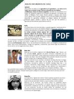 GUIA Pueblos Originarios