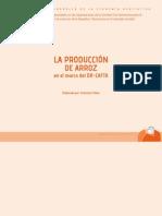 La producción del arroz en el marco del DR CAFTA