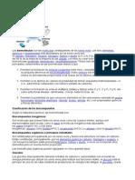 BIOMOLÉCULA1.docx