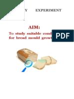 Bio Class 11 Bread Mold Experiment