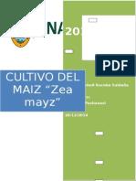 INFORME FINAL original del maiz.docx