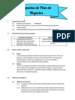 """Plan de Negocios de nuestra Empresa """"In Focus"""""""