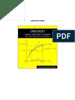 Cálculo I - Limites, Derivadas e Integrais (Exercicios Resolvidos e Comentados)