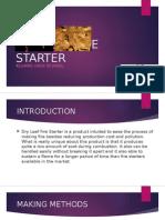 DRY LEAF FIRE STARTER.pptx
