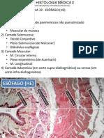 Atlas Histologia 2.pdf