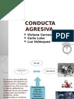 Conducta Agresiva