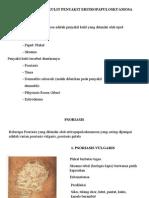 UKK ERITROPAPULOSKUAMOSA&PIODERMA