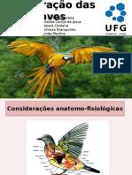 Respiraçao Das Aves e função não respiratória dos pulmões