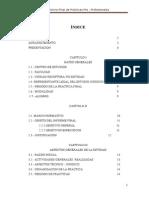 Informe Final de Practicas Preprofesionales - Saul Quispe h