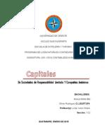TRABAJO DEL TEMA 4 Y 5. Capitales de Sociedades de Responsabilidad Limitada y de Compañias en Comandita 2