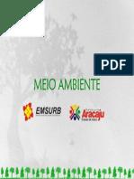 arborizacao1