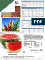 Alimentos - Valor Nutricional