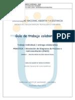 Guia Actividades Trabajo Colaborativo 208007- II-2015 v2
