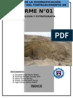 informe n°01