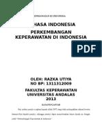 Perkembangan Keperawatan Di Indonesia Eggi