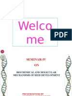 Seed devp_IV Seminar_16_10_14_final.pptx