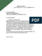 Raport de Activitate ZIUA NR[1]. 7