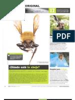 Revista Juan Carlos 2l1