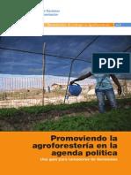 FAO - Plantacion Agro Forestal