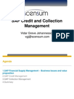 SAP-Credit-and-Collection-management.pdf