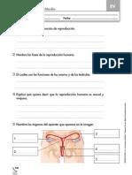 Evaluacion3.pdf