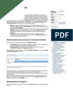 Framework ScheduleProtheus 100815 1333 8402