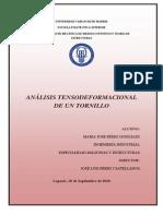 PFC_Analisis Tensodeformacional de Un Tornillo_MJPG_2010!09!20